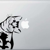 Cat - Whatcha Doin? - I Can Haz? - Macbook or Laptop Decal