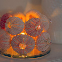 Beach Decor Sea Urchin Candleholder