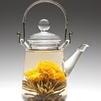 Tea Beyond Heat Resistant Glass Teapot Duo 16-Ounce