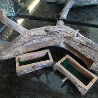 log  jewelry box