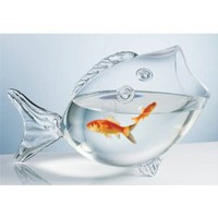 Amazon.com: CLEAR FISH BOWL - CLEAR FISH SHAPED BOWL: Kitchen &amp; Dining
