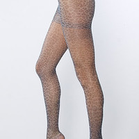 The Leopard and Lace tights in Black Combo