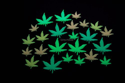 24 Piece Glow in the Dark Multicolor Marijuana Weed Pot Leafs on ...
