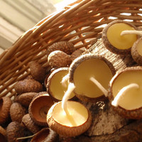 acorn cap candles woodland /the littlest lights/ by prettydreamer