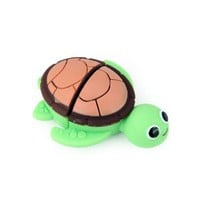 Amazon.com: HDE Sea Turtle Flash Drive - 4GB: Computers &amp; Accessories
