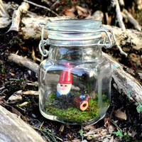 Kawaii Terrarium Jar Gnome with Bird on Log by PumpkinPyeBoutique