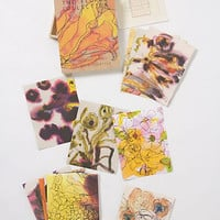 Zoe Bios Creative Print Set, Floral Collection