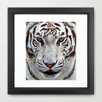 BLUE-EYED BOY Framed Art Print by catspaws | Society6