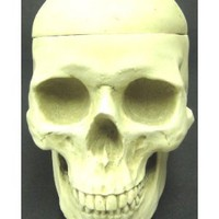 Anatomic Human Skull Lidded Candy Dish Stash Box