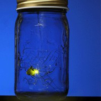 ThinkGeek :: Electronic Firefly in a Jar