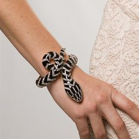 Gold Black Enamel Serpent Cuff from Lucky 21 at Lucky 21 Lucky 21