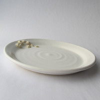 Plate in White with Barnacle