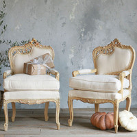 One of a Kind Vintage Arm Chair Old Italianate Set of 2