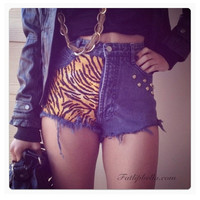 High waist Acid Wash Tiger Print shorts with studs by FatLipBella