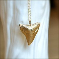 Long Shark Tooth Gold Necklace