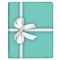 iPad Case - iPad 3 Case - iPad Cover - iPad 3 Cover - Tiffany Blue iPad 3 Case