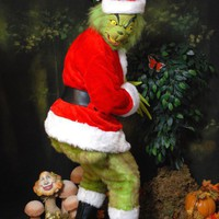 Grinch Adult Costume Mascot by Bbeauty79 on Etsy