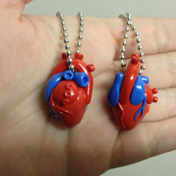Anatomically Correct Heart Necklace by UncloudedDesigns on Etsy