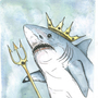 Shark King