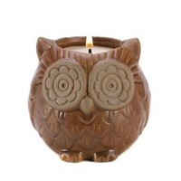 Aspen Owl Figural Evergreen Fir Scented Candle Decor