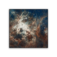 Hubble Universe Tarantula Nebula on 11x11 PopMount Ready to Hang FREE SHIPPING