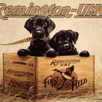 Remington Finder's Keepers Tin Sign at AllPosters.com