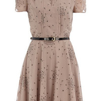 Black bird print tea dress - New In Dresses - Dresses - Dorothy Perkins