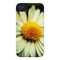 Just a Daisy iPhone 4 Case-Mate Cases from Zazzle.com