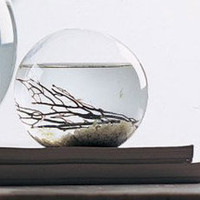 Self-Sustaining EcoSphere - HackerThings
