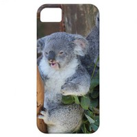 Cuddly Koala Bear iPhone Case iPhone 5 Cover from Zazzle.com