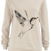 Grey hummingbird sweat top - Latest Look: Pretty Cosy  - What&amp;#039;s New  - Dorothy Perkins
