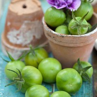 food idea / green tomatoes...