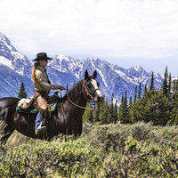 ride a horse in wild country land- possibly by myself