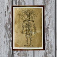Anatomy print Antique paper Human circulatory system Antiqued decoration