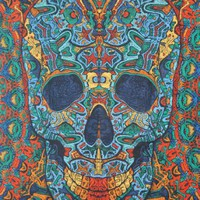 3-D Skull Tapestry Wall Hanging 60X90 w/ 3-D Glasses Included