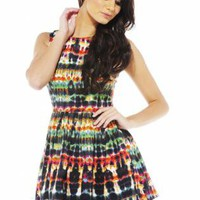 Multi Color Ink Print Sleeveless Skater Dress
