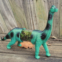$25.00 Live Dinoterrarium unique strange green long neck by Run2theWild