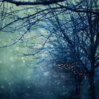 Silent Night  Stretched Canvas by Laura Ruth  | Society6