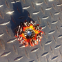 Zebra Print  and orange gerber flower hair clip by RuvalcababMade