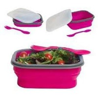 Amazon.com: DCI Small Collapsible Lunch Box, Assorted Blue and Purple Colors: Kitchen & Dining