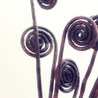 Artificial Fiddle Head Ferns or Fern Shoots