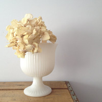 Milk Glass Pedestal Bowl - Fluted - E. O. Brody Co.