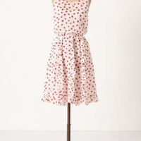 Cerise Stamped Dress - Anthropologie.com