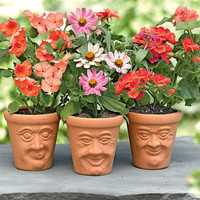 Face Pots, Set of 3