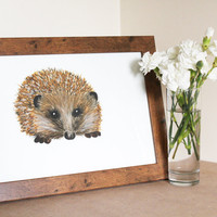 A4 Original Watercolour Hedgehog Illustration by WaterFeathers