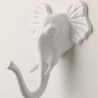 Encased Elephant Hook - Anthropologie.com