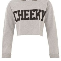 New Look Mobile | Grey Cheeky Crop Sweater