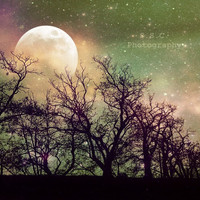 Night Photo Tree Photo Magic 5x5 inch Photo by SSCphotography