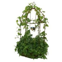 One Kings Lane - Bring in the Garden - Live Ivy Rustica Birdcage