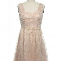 Femme Fireworks Dress in Blush